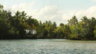 Trivandrum Backwater Poovar